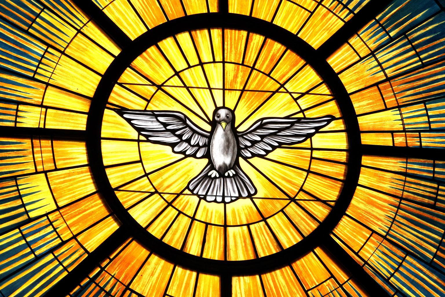 五旬节主日 | 从水和圣灵而生(约翰福音3:1-15)| 王一牧师